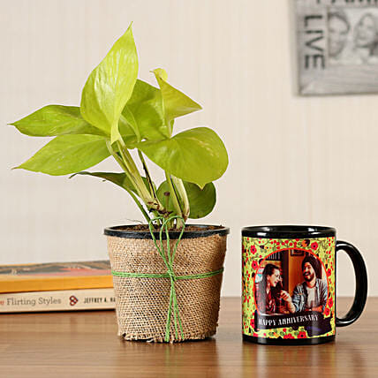 online plant with mug