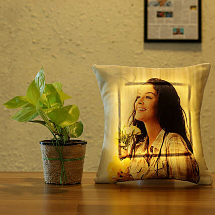 money plant with led cushion combo:Plants N Personalised Gifts