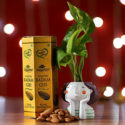 Online Money Plant And Roasted Badam Pack