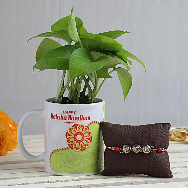 Online Plant With Rakhi For Bhai