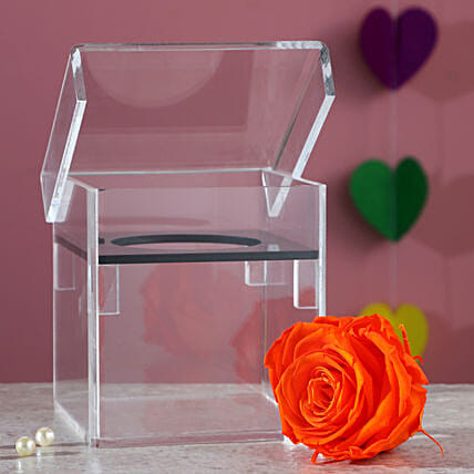 infinity orange colour rose online:Forever Rose Gift