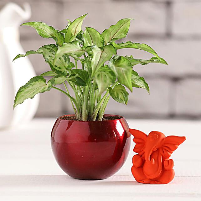 Orange Ganesha Idol & Syngonium Plant