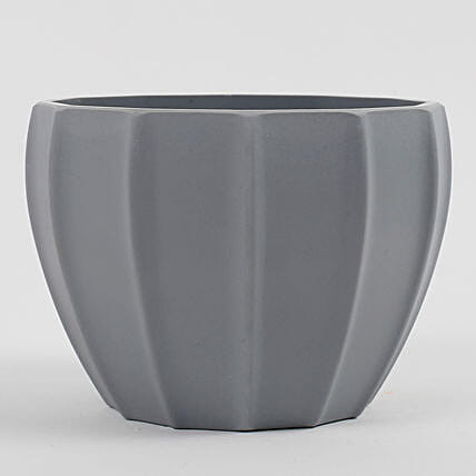 grey color plant vase