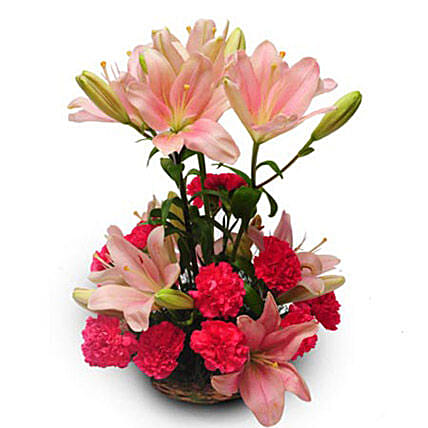 Perfect pink - A basket arrangement of 10 pink lilies and 12 pink carnations.