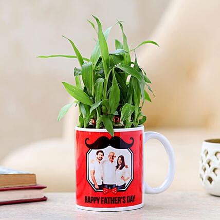 lucky plants for fathers day online:Father's Day Plants