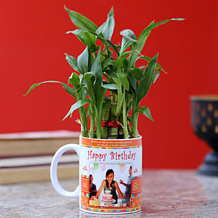 printed mug with bamboo plant for him online