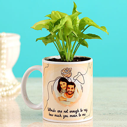 Karwa Chauth Coffee Mug & Plant:Plants N Personalised Gifts