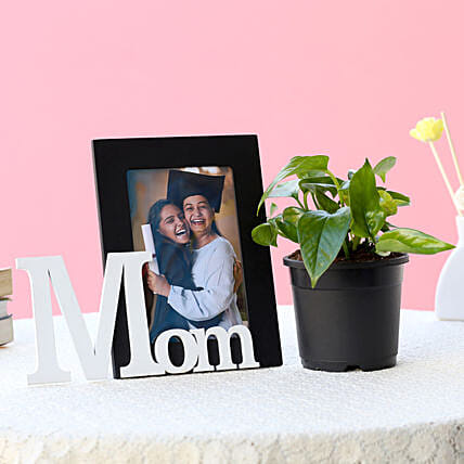 Precious Mom Frame and Plant-1 personalized frame for mom,1 m1y plant
