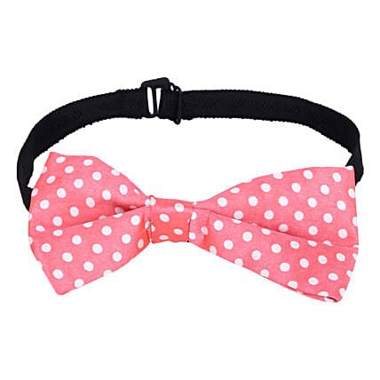 Cute Polka Dots Bow Online:Pet Gifts