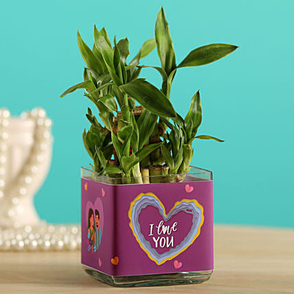 Potted Lucky Bamboo In I Love You Glass Vase:Office Desk Plants