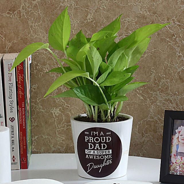 lovely money plant in printed vase