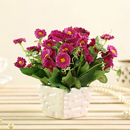purple artificial daisies in white pot online