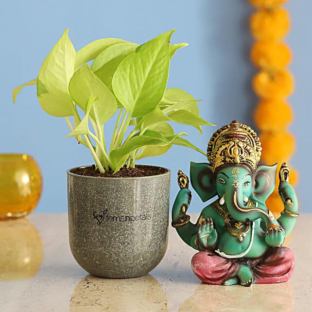 Raj Ganesha Idol Money Plant Combo