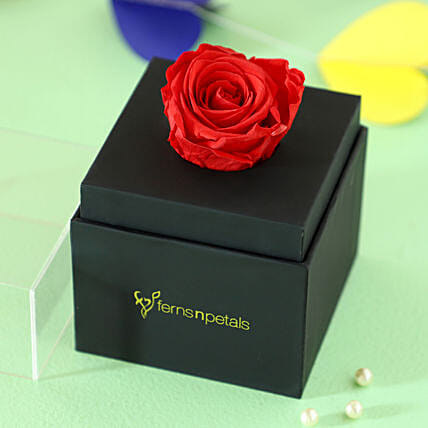 infinity red rose for her online