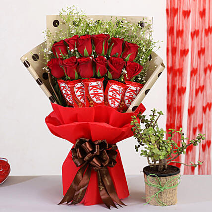 Red Roses Bunch With Jade Plant Kitkat