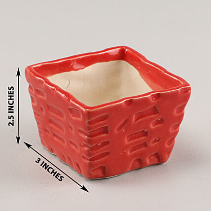 Online Red Ceramic Planter