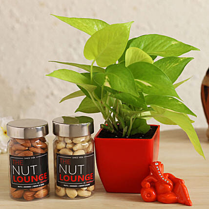 Resting Ganesha With Money Plant & Nuts