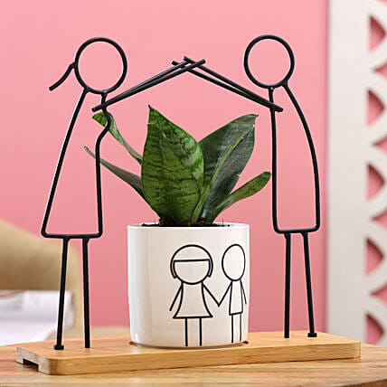Sansevieria Plant With Cute Boy Girl Figurine:Plants for anniversary