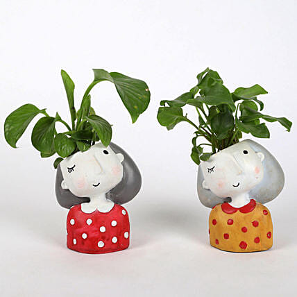 combo of 2 kitchen plant for her:Resin Planters
