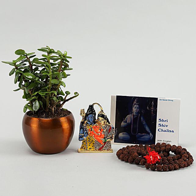 Shivaratri Puja Items Jade Plant:Pooja Thali