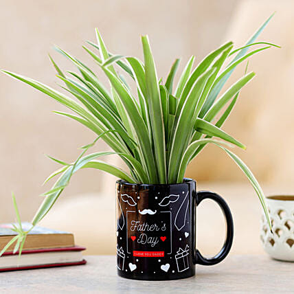 plant in mug for fathers day