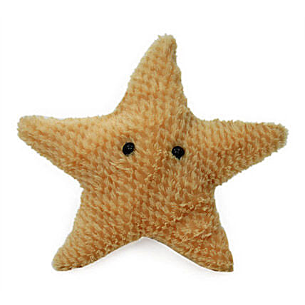 Star Designed For A Star-9 inch star shaped soft toy:Send Soft toys to Noida