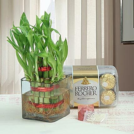 Two layer bamboo with chocolates