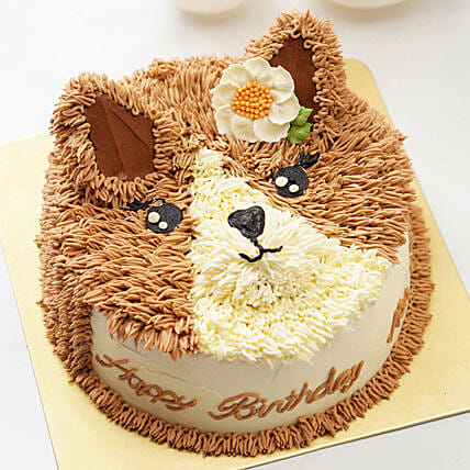 Designer Cat Cakes Online:Birthday Cakes for Kids