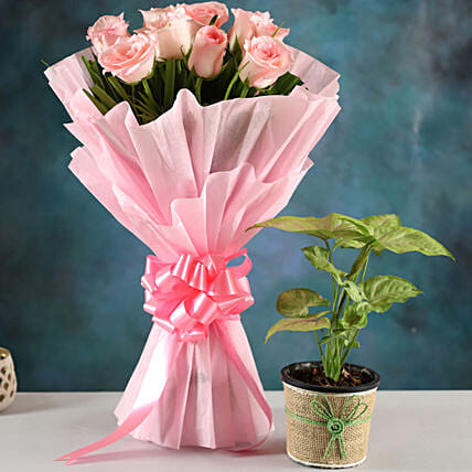 Buy Plant And Rose Bouquet:Flower Combos