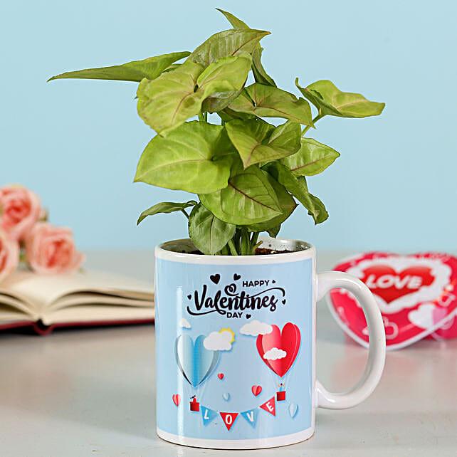 Online Syngonium Plant In Heart Mugs