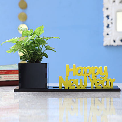 Online Plant In New Year Planter