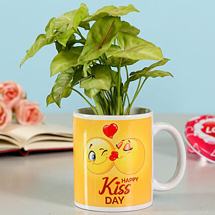 Online Syngonium Plant For Kiss Day