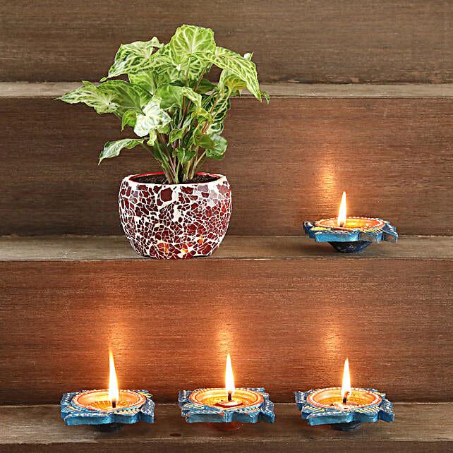 Syngonium Plant in Mosaic Pot:Spiritual and Vastu Plants