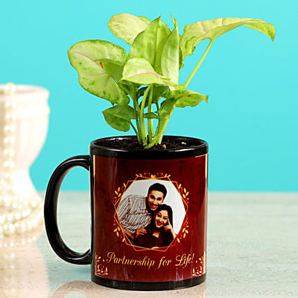 Karwa Chauth Plant Gift for Him:All Gifts Karwa Chauth