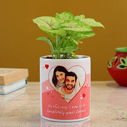 Syngonium Plant In Personalised White Planter