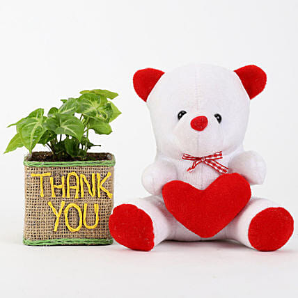 Printed Plant with Teddy Online