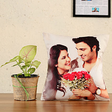plant with printed cushion combo:Plants N Personalised Gifts