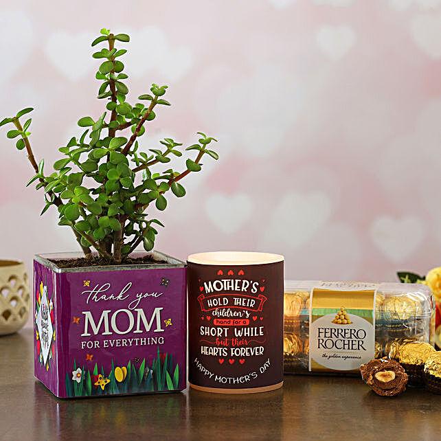 Thank You Mom Jade Plant And Ferrero Rocher Hamper