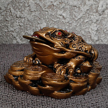 statue of feng shui frog