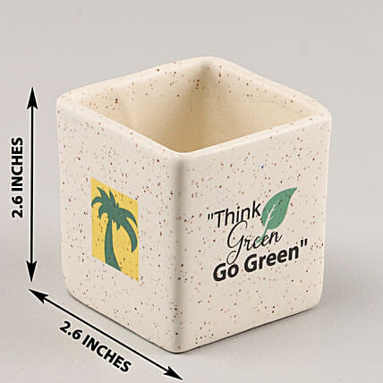 Online Think Green Pot