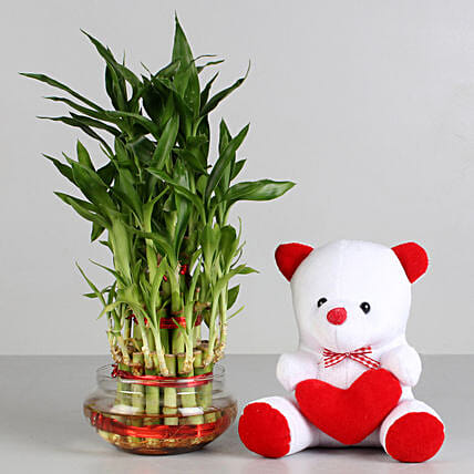 Teddy N Plant Combo for Valentine:Teddy Day Combos