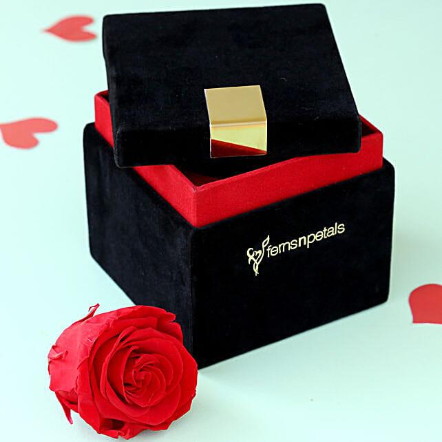 Timeless - Forever Red Rose