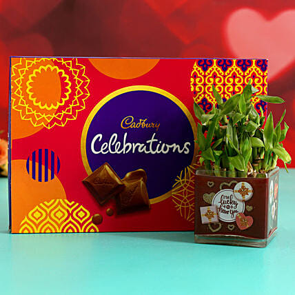 Two Layer Bamboo In Sticker Vase & Cadbury Celebrations Hand Delivery