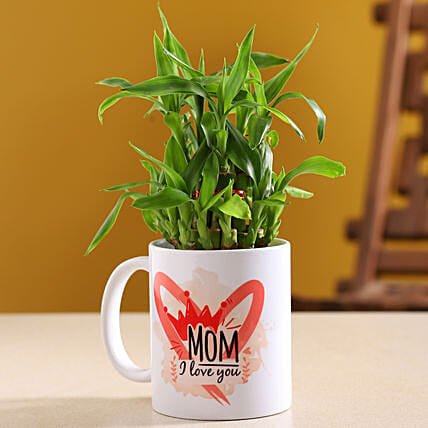 Two Layer Bamboo Plant In I Love U Mug:Send Mother's Day Plants