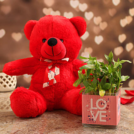 Two Layer Bamboo Plant In Love Vase & Red Teddy