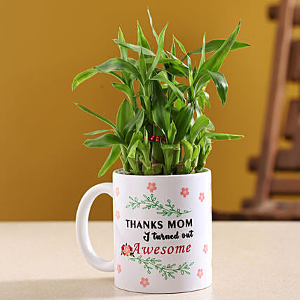 Two Layer Bamboo Plant In Mother Day Mug