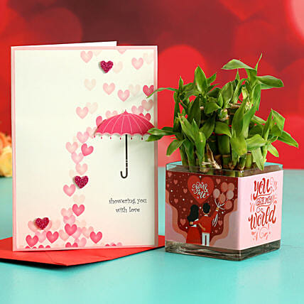 Two Layer Bamboo Plant In Sticker Vase Greeting Card:Send Lucky Bamboo for Him
