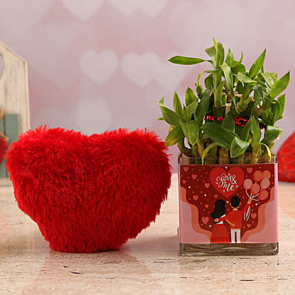 Two Layer Bamboo Plant In You N Me Vase & Red Heart