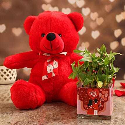 Two Layer Bamboo Plant In You N Me Vase & Teddy:Send Soft toys to Gurgaon