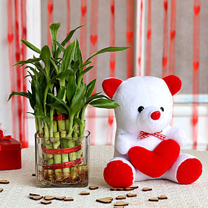 Bamboo Plant and Teddy Combo  for valentine:Soft Toys